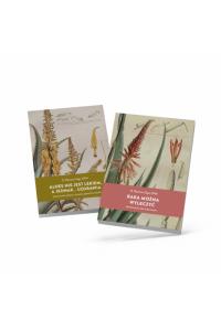 Set mit 2 Büchern von Pater Romano Zago